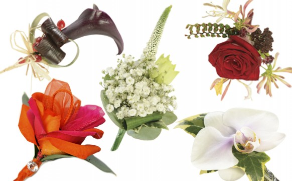 Flowers-feat-img.jpg